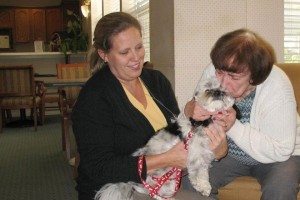 Pet therapy for the elderly