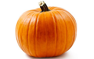 Pumpkin is a good source of fibre and beta carotene (a source of vitamin A) for dogs