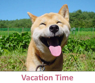 Vacation time at DogCo